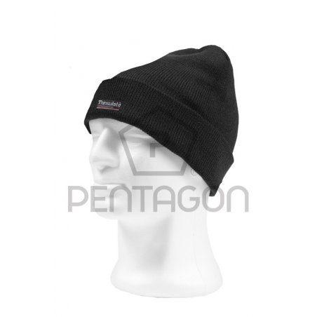 Watch Cap with Thinsulate Liner - Black